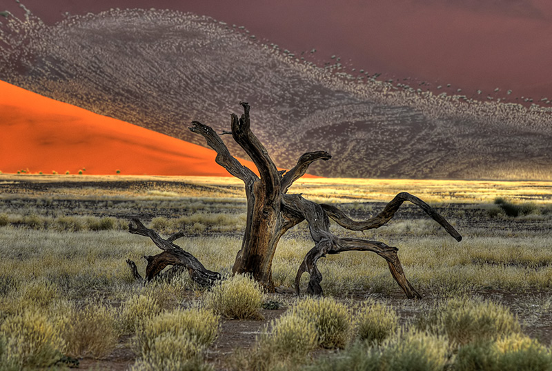 landschappen_20110207_1536808451-jpg