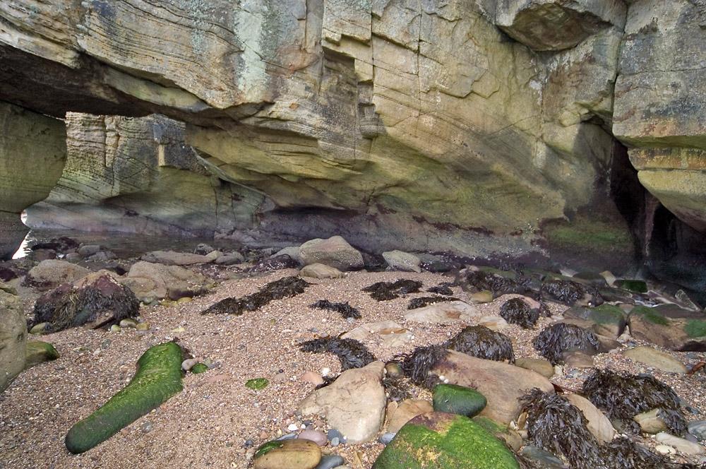 rots-aan-kust-web-jpg