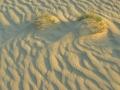 104-zandgolven-web-jpg