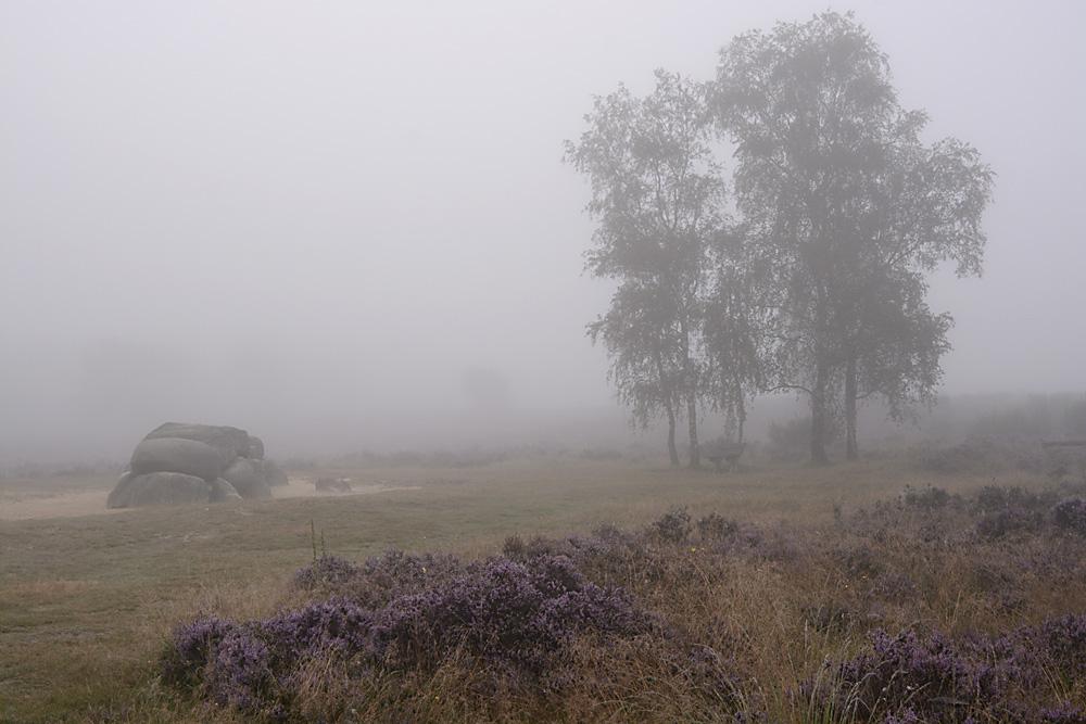 Hunnebed in de mist