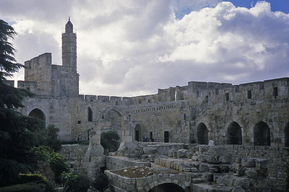 david-toren-jpg