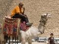 jonge-op-kameel-jpg