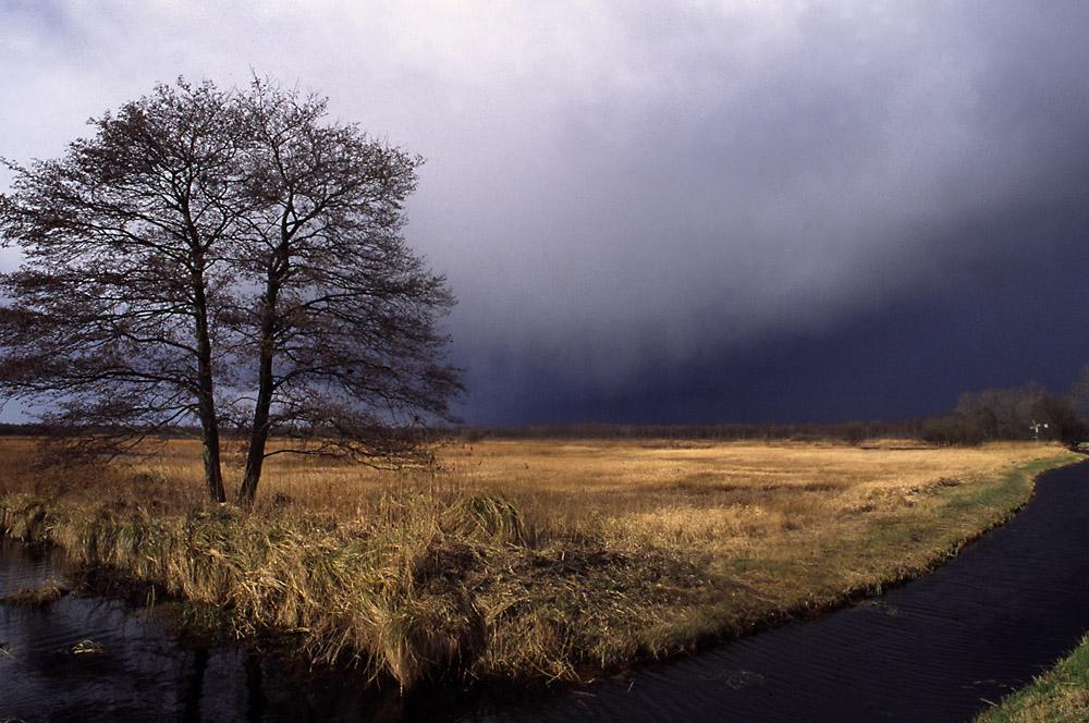 087-weerribben-donkere-lucht-web-jpg-jpg