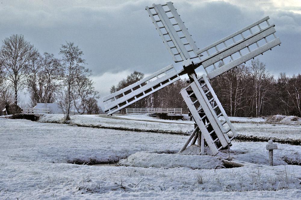 090-paaltjasker-winter-web-jpg