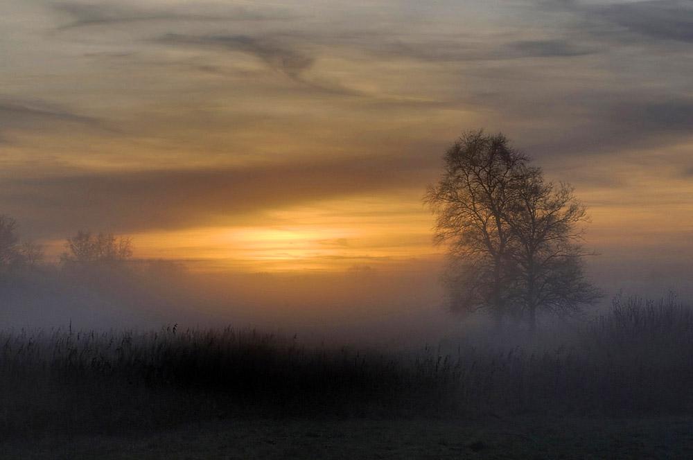 boom-met-mist-web-jpg