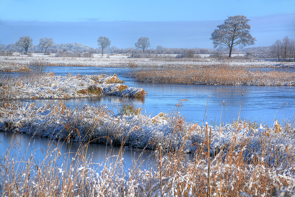 woldlakeplas winter 1000.jpg