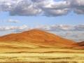 landschappen_20110207_1201196984-jpg