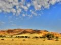 landschappen_20110207_2032578887-jpg